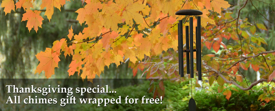Thanksgiving special... free gift wrapping